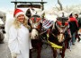 Tierweihnacht & Wintersaison