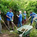 Freiwilligentag 2016: Helfer für 6 Projekte gesucht!