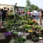 Kraichgauer Gartenbörse ein Erfolgskonzept