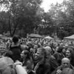 Blacksheep Festival – Neue Schafrasse entdeckt
