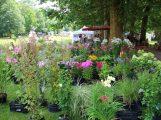 Gartenmesse mit viel Ambiente