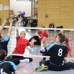 Sitzvolleyball international in Hoffenheim