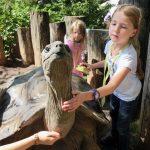 Im Heidelberger Zoo macht Schule selbst in den Ferien Spaß!