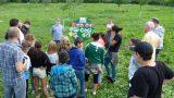 Streuobstwiese der AVR wird zum grünen Klassenzimmer