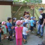 Besuch in der Greifvogelpflegestation in Bad Friedrichshall