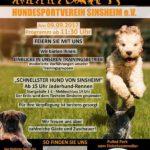 Der Hundesportverein Sinsheim e.V. feiert Geburtstag