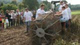 17. historischer Kartoffeltag