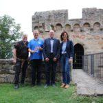 Fledermäuse auf Burg Steinsberg