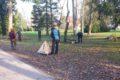 Baumarbeiten im Schlosspark NBH