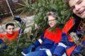 Weihnachtsbaum-Sammlung der Jugendfeuerwehr