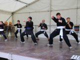 Viet vo Dao – Ästhetische Kampfkunst