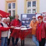 Unterschriftenaktionen SPD Sinsheim