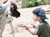 Buntes Herbstprogramm der Zooschule