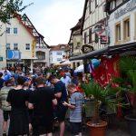 Stadtverwaltung organisiert Fußball – Fanfeste zu den Champions League Spielen der TSG 1899 Hoffenheim