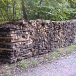 Brennholz weiterhin stark nachgefragt