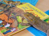 Vorlesetag im Zoo