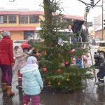 Alle Jahre wieder: Kindergartenkinder schmücken Weihnachtsbäume