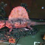 Zeitreise in die Urzeit der Dinosaurier