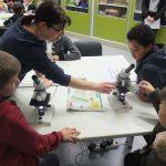 Kraichgau-Realschule öffnet ihre Türen für neugierige Viertklässler