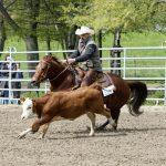 Spitzensport auf der Sinsheim Open