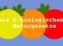 Die 5 Biologischen Naturgesetze