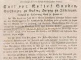 """Ausstellung """"Demokratie wagen? Baden 1818 – 1919"""