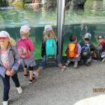 Die Schlaufüchse besuchen den Karlsruher Zoo