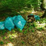 Waibstadt: Müll im Wald abgeladen – Polizei sucht Zeugen