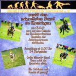 """Der Hundesportverein Sinsheim sucht den """"Schnellsten Hund im Kraichgau"""""""