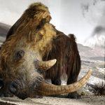 23 Millionen Jahre Klimawandel