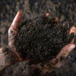 RAL-Gütesiegel für hochwertigen Kompost aus der Sinsheimer AVR Bioabfallvergärungsanlage