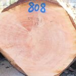 Bei der 13. Eberbacher Nadelwertholzsubmission wurde auf jeden Stamm geboten