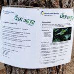 Waldpädagogik zum Mitnehmen