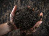 AVR Bioabfallvergärungsanlage in Sinsheim produziert ausgezeichneten Kompost