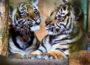 Besuch im Zoo Heidelberg wird wieder vielfältiger